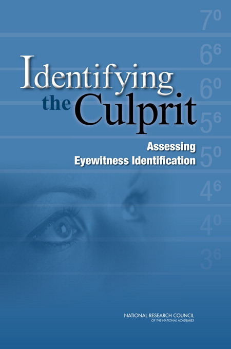 Identifying the Culprit Report Cover