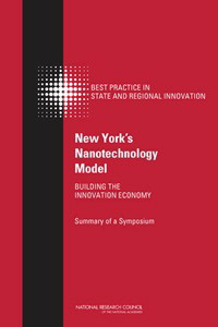 New York's Nanotechnology Model