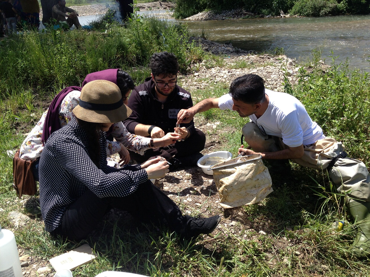 2-024_SCI 323 Freshwater Science students collect aquatic macroninvertebates at