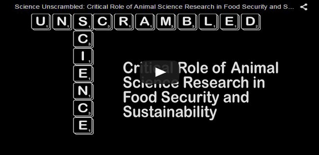 the role and importance of animal research Sustainable development: the role of agriculture  plant and animal production systems that in the long run  lack of investment in agricultural research 9.