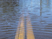 News-consensus studies-flooded street-thumbnail