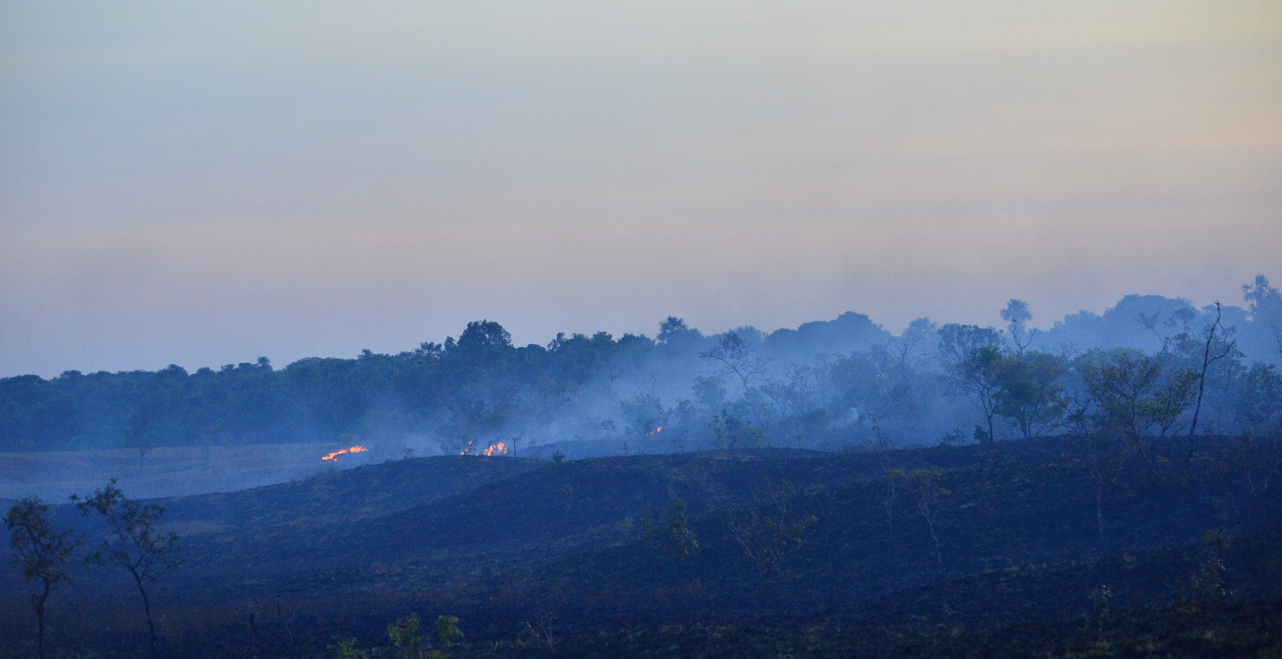 5-331 Fires occurring in the Savannah forest in the Bita region