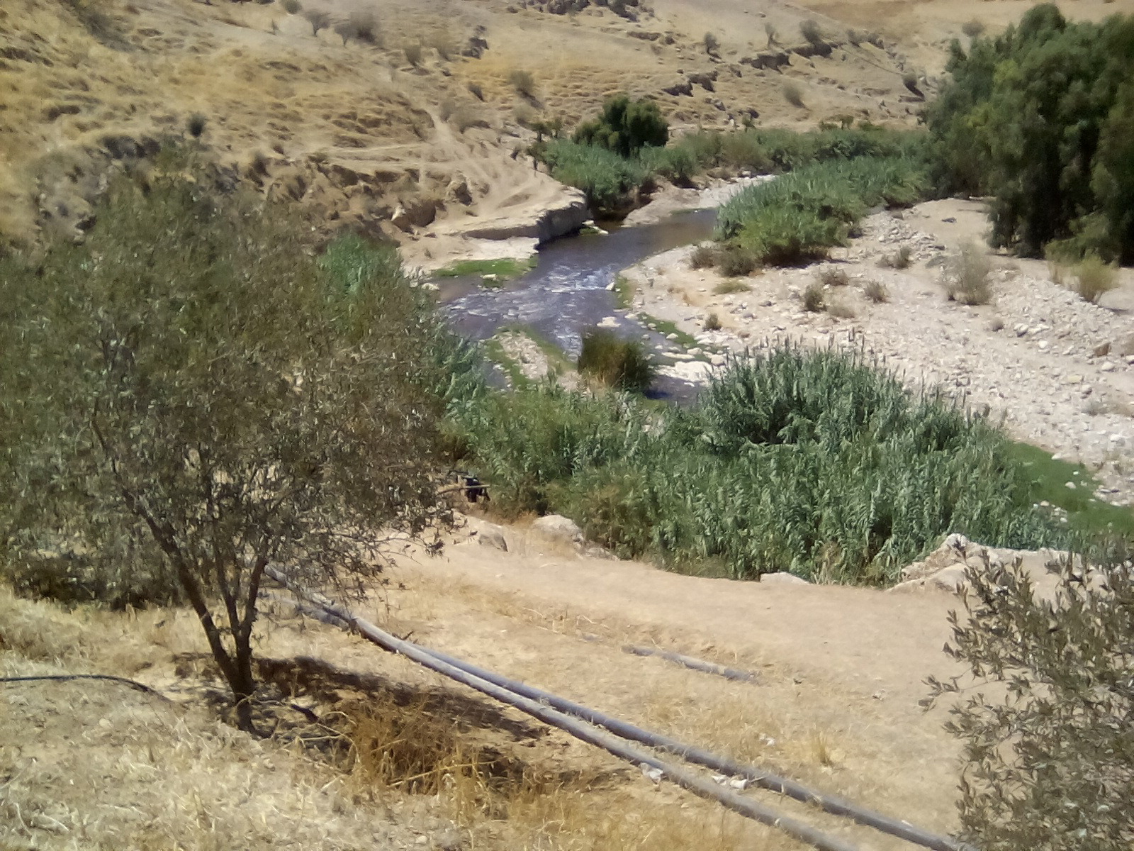4-369_ Subsection of the upper Zarqa river reach (photo taken September 4 2016)